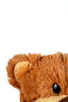 Free Cute Teddy Bear Stock Photography - 8508192