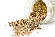 Free Ground Black Pepper Stock Image - 8508571