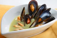 Free Shell Soup Royalty Free Stock Photography - 8508587