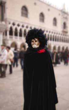 Free Venice Carnival Royalty Free Stock Photos - 8509048