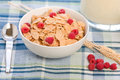 Free Breakfast Cereal Royalty Free Stock Images - 8514819