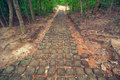 Free Ancient Stone Path From Ta Som Temple. Angkor Wat Royalty Free Stock Photos - 8516638