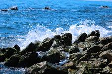 Free Water Splash Royalty Free Stock Images - 8510869