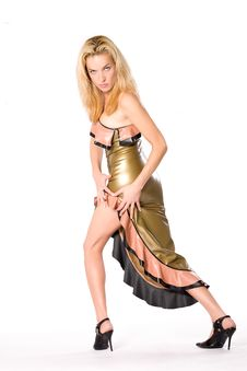 Free Latex Dress Royalty Free Stock Photos - 8510918