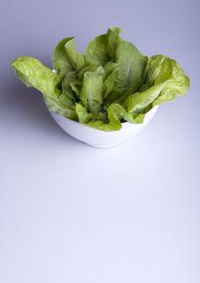 Free Salad Royalty Free Stock Photo - 8511505
