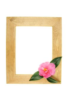 Free Frame And Flower Royalty Free Stock Photography - 8512857