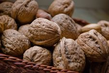 Free Walnuts, Nutritious Product. Royalty Free Stock Photography - 8512927