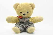 Free Teddy Bear Stock Photo - 8513080