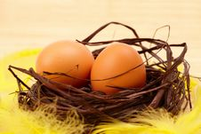 Free Eggs In Nest Royalty Free Stock Images - 8513679