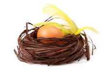 Egg In Nest With Feathers Stock Image