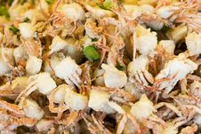 Baby Crabs Royalty Free Stock Image