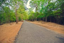 Free Secondary Road Path From Angkor`s Temple.Cambodia Stock Photo - 8516110