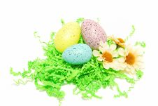Eggs On The Grass Royalty Free Stock Photography
