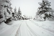 Free Road In Snowstorm Stock Images - 8517654
