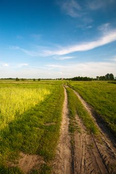 Free Clouds And Grass Royalty Free Stock Photography - 8519767