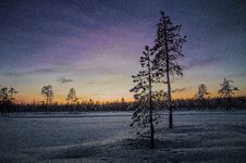 Free Sunset Over Snowy Field Royalty Free Stock Images - 85127629