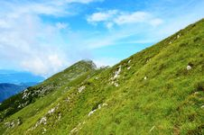 Free Green Grass On Mountain Side Royalty Free Stock Photography - 85130087