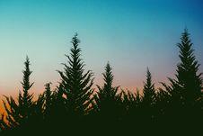 Free Sunset Behind Trees Stock Image - 85130741
