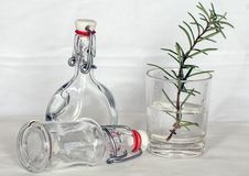 Free Green Leaf Plant On A Drinking Glass And Bottles Royalty Free Stock Photos - 85153518