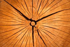 Free Wood Disk Cracks Royalty Free Stock Photography - 85154267