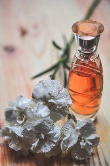 Free Perfume Bottle Stock Images - 85162154