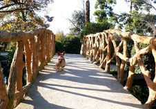 Free Fun At The Park Royalty Free Stock Image - 85190206