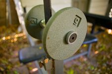 Free Dumbbell Stock Photos - 8522143