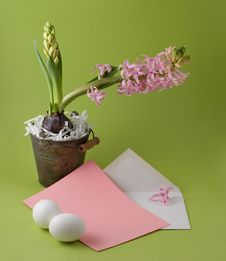 Free Easter Congratulation Royalty Free Stock Image - 8522476