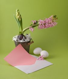 Free Easter Congratulation Stock Photo - 8522550