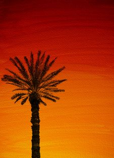 Free Palmtree Sunset Background Royalty Free Stock Photography - 8522827