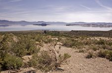Free Mono Lake Stock Photography - 8523432