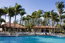 Free Pool Cabanas And Palms Royalty Free Stock Photo - 8523455