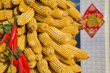 Free Corn On The Cob Stock Images - 8523634