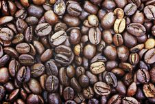Free Heap Of Coffee Beans As Background. Royalty Free Stock Photo - 8524545