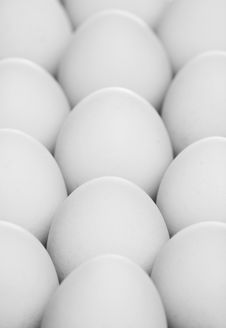 Free Pack Of Eggs Stock Photography - 8524722