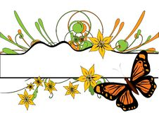 Free Butterfly Royalty Free Stock Photography - 8527947