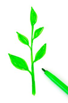 Free Drawing Plant And Pen Stock Photo - 8528020