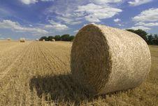 Harvest Straw Royalty Free Stock Photo