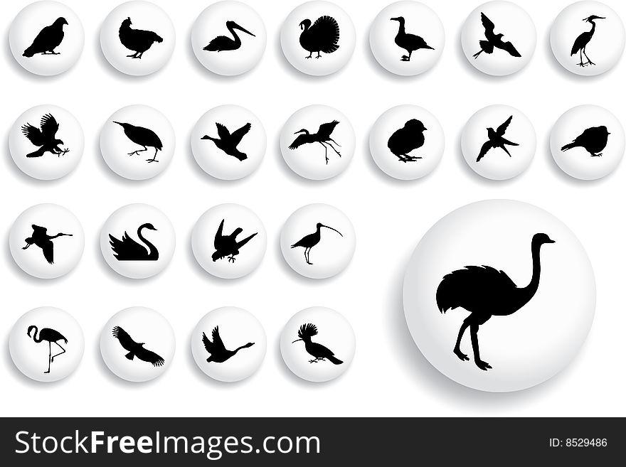 Big set buttons - 18_B. Birds