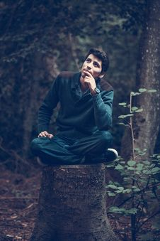 Free Man Sitting On Tree Stump Royalty Free Stock Photo - 85255645