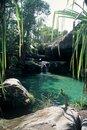 Free Natural Swimming Pool,Madagascar Royalty Free Stock Images - 8539519