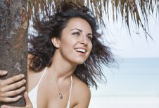 Free Tropic Breeze Stock Photo - 8530490