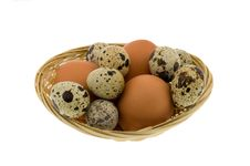 Free Crude Eggs Royalty Free Stock Photo - 8531985