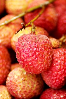 Free Litchi Chinensis Royalty Free Stock Image - 8533596