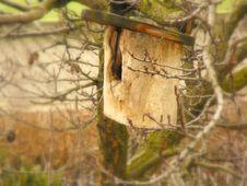 Free Birdbox Stock Photography - 8536902