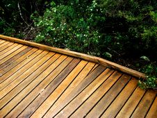 Free Hinterland Boardwalk Stock Photo - 8539560