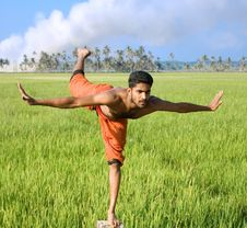 Free Kalari, Indian Martial Art Royalty Free Stock Photo - 8539995