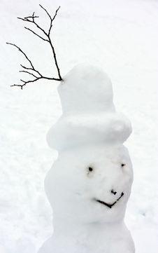 Head Of Natural Snowman Stock Image