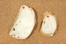 Free Two Slices Of Bread Pinned To Corkboard Stock Photography - 8542882