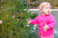 Free Pretty Little Girl With Flowers. Royalty Free Stock Photos - 8543168